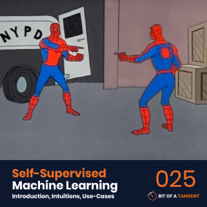025   Self-Supervised Machine Learning: Introduction, Intuitions, and Use-Cases