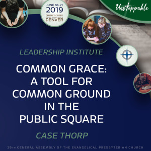 Reformed Theology—Common Grace: A Tool for Common Ground in the Public Square
