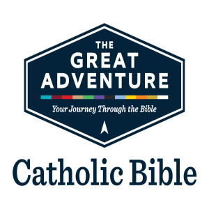 The Great Adventure Bible with Jeff Cavins