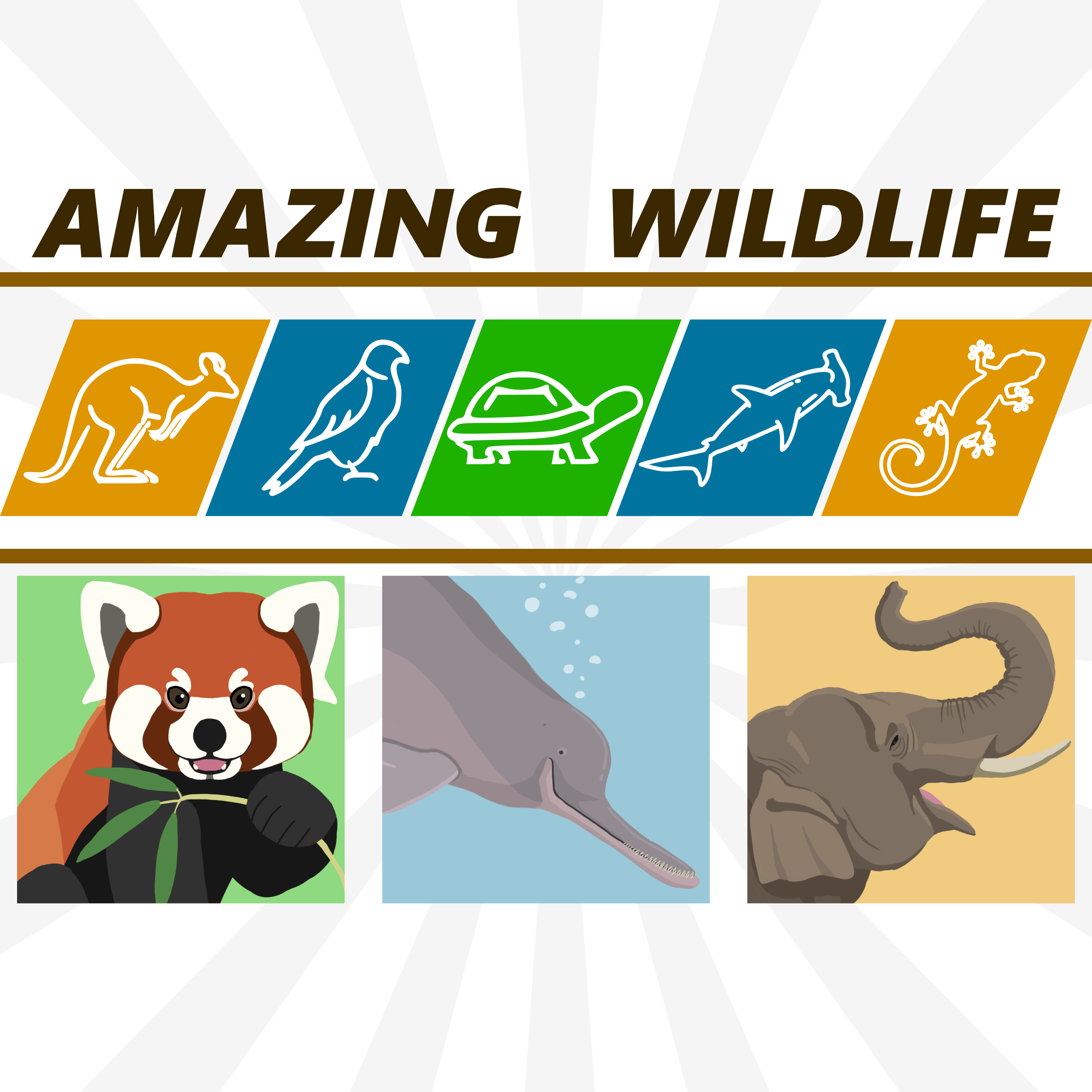 Red Panda | South Asian River Dolphins | Asian Elephants