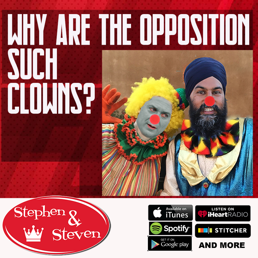 STEPHEN & STEVEN - WHY ARE THE OPPOSITION SUCH CLOWNS?!