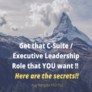 Get that C-Suite / Executive Leadership Role that YOU want !! Here are the secrets!!