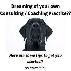 Dreaming of your own Consulting / Coaching Practice?? Here are some tips to get you started...