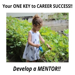 Your ONE KEY to Career Success!!  Develop a MENTOR (s) !!