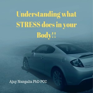 STRESS is like POISON in your Body! Do this QUICKLY!!!