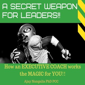 A Secret Weapon for LEADERS! How your EXECUTIVE COACH works the MAGIC!