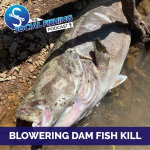 Ep 20 - Massive Murray Cod Deaths in Blowering Dam - Why have they died? With Rhys Creed