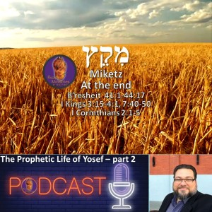 The prophetic life of Yosef- part 2