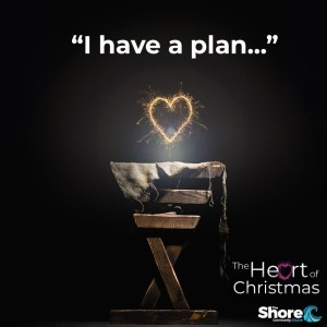 I Have a Plan...
