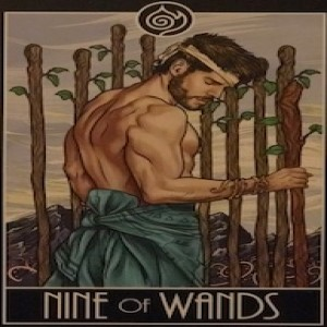 February 7, 2020 - Tarot Card of the Day - 9 of Wands