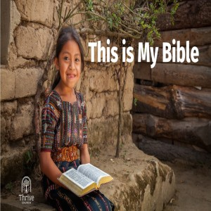 This is my Bible - Week 3 - How to Study the Bible.