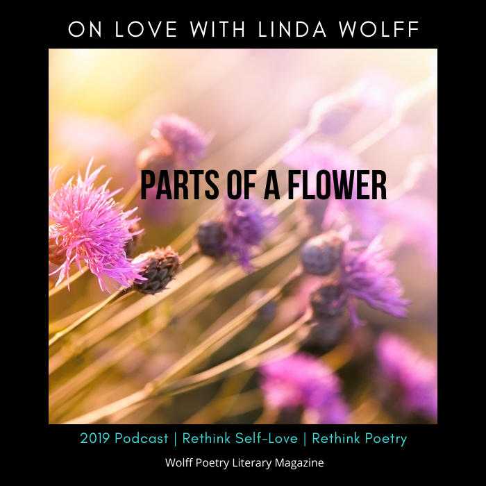 On Love with Linda Wolff:Part 4: Identify the Parts of Yourself That Played the Good or Bad Role