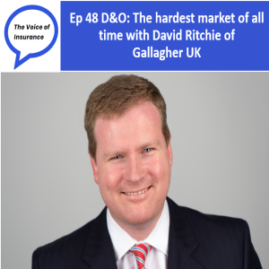 Ep 48 D&O: The hardest market of all time with David Ritchie of Gallagher UK