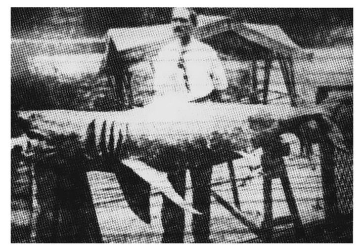 S05E14: The Real Jaws: The Jersey Shore Shark Attacks of 1916