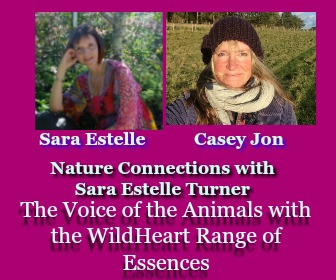 The Voice of the Animals with Casey Jon and Sara Estelle Turner