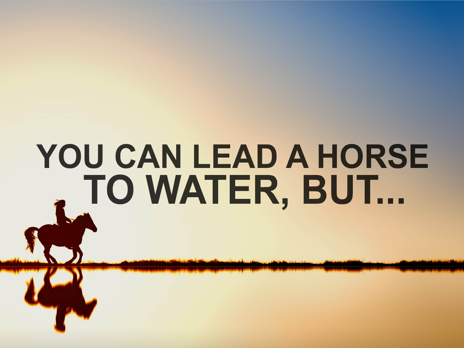 You Can Lead a Horse to Water, But...