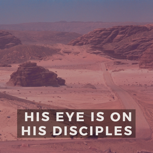 02.17.19 - His Eye is On His Disciples