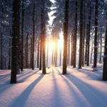 Preparing for the December Solstice. What You Need to Know