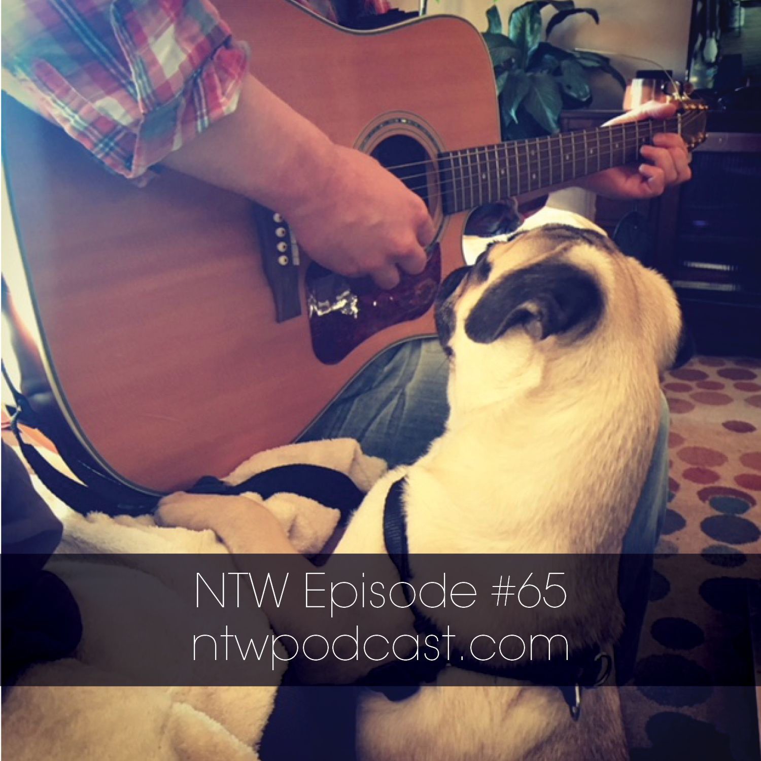 Nothing's Too Weird: Episode 65 (Just Say No)