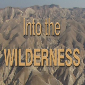Into the Wilderness: A Lesson In Faithfulness
