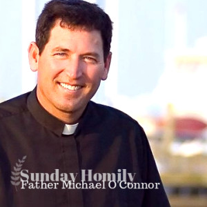 Sunday Homily - Will You Join the Celebration?