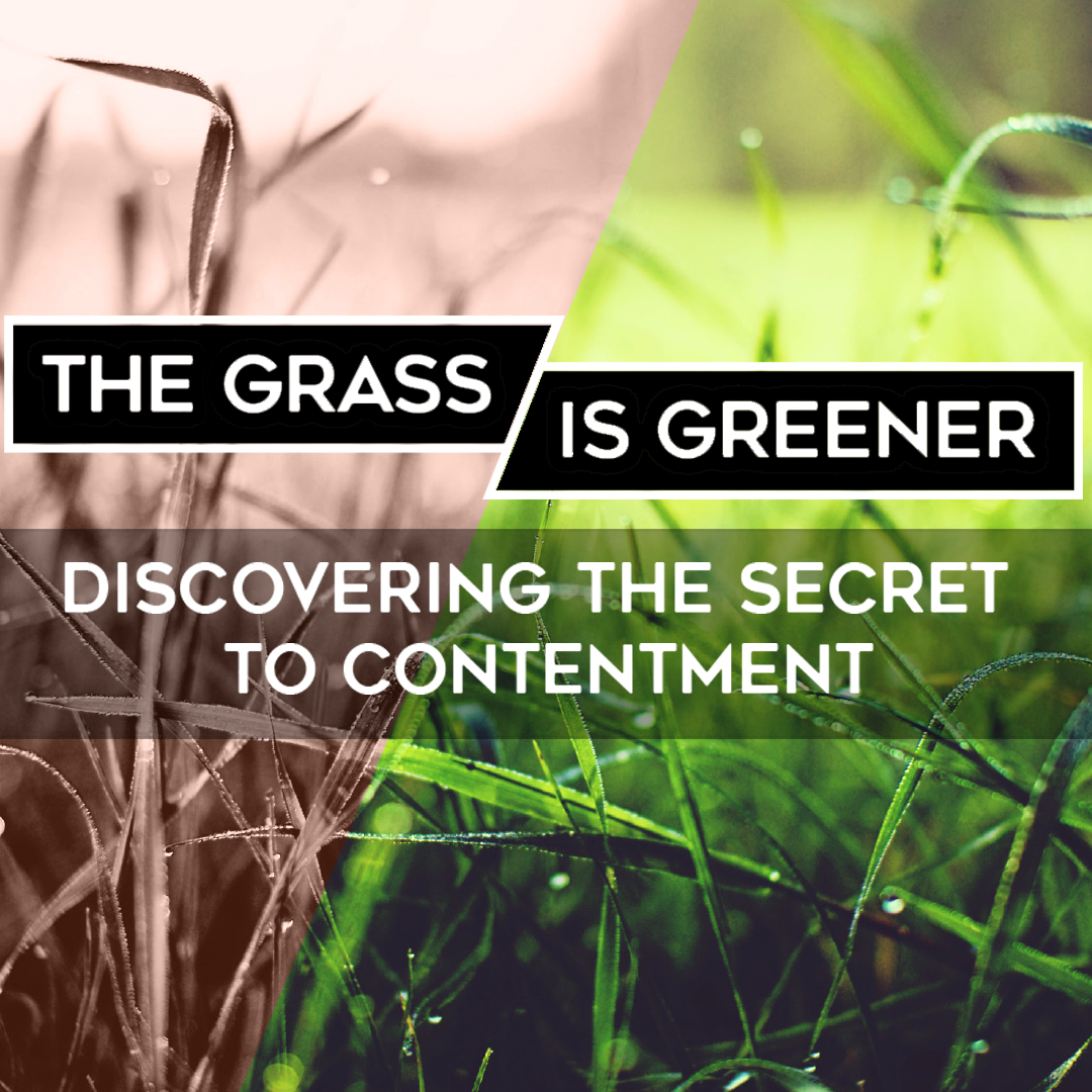 The Grass is Greener:  Winning Through Losing