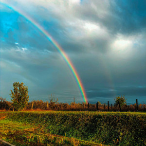 Harvest Moon, Blue Moon and the Message of the Rainbow