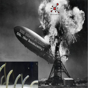 #163 - Oh the humanity! The Story of the Hindenburg