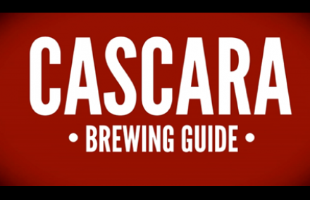 Cascara Brew Guide