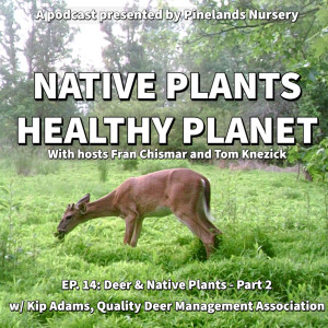 Meet Deer and Native Plants - Part 2