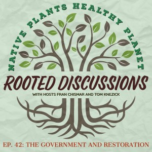 Rooted Discussions - The Government and Restoration