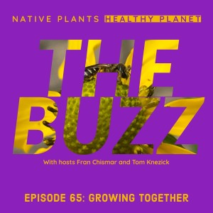 The Buzz - Growing Together