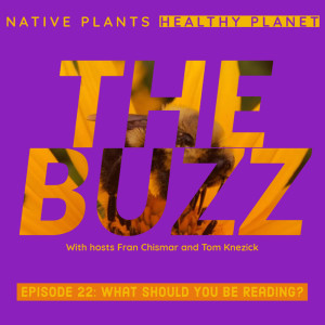 The Buzz - What Should You Be Reading?