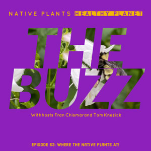 The Buzz - Where the Native Plants at!