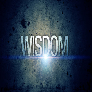 Our Need for Wisdom (Roger Polanco)