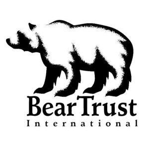 The Growing Threats To Bear Conservation & How You Can Help