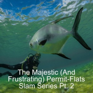The Majestic (And Frustrating) Permit-Flats Slam Series Ep. 2