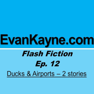 Ducks & Airports - Two Flash fiction stories