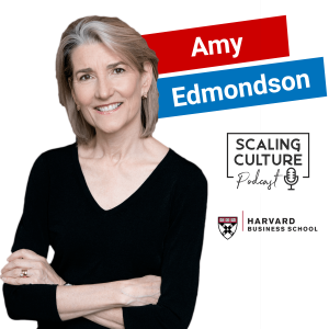 Harvard Business School: How To Build Fearless Organizations - Episode 51