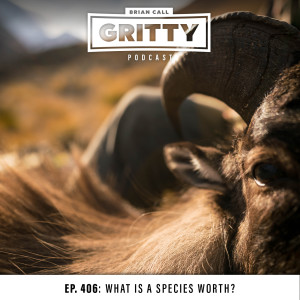 EP. 406: WHAT IS A SPECIES WORTH?