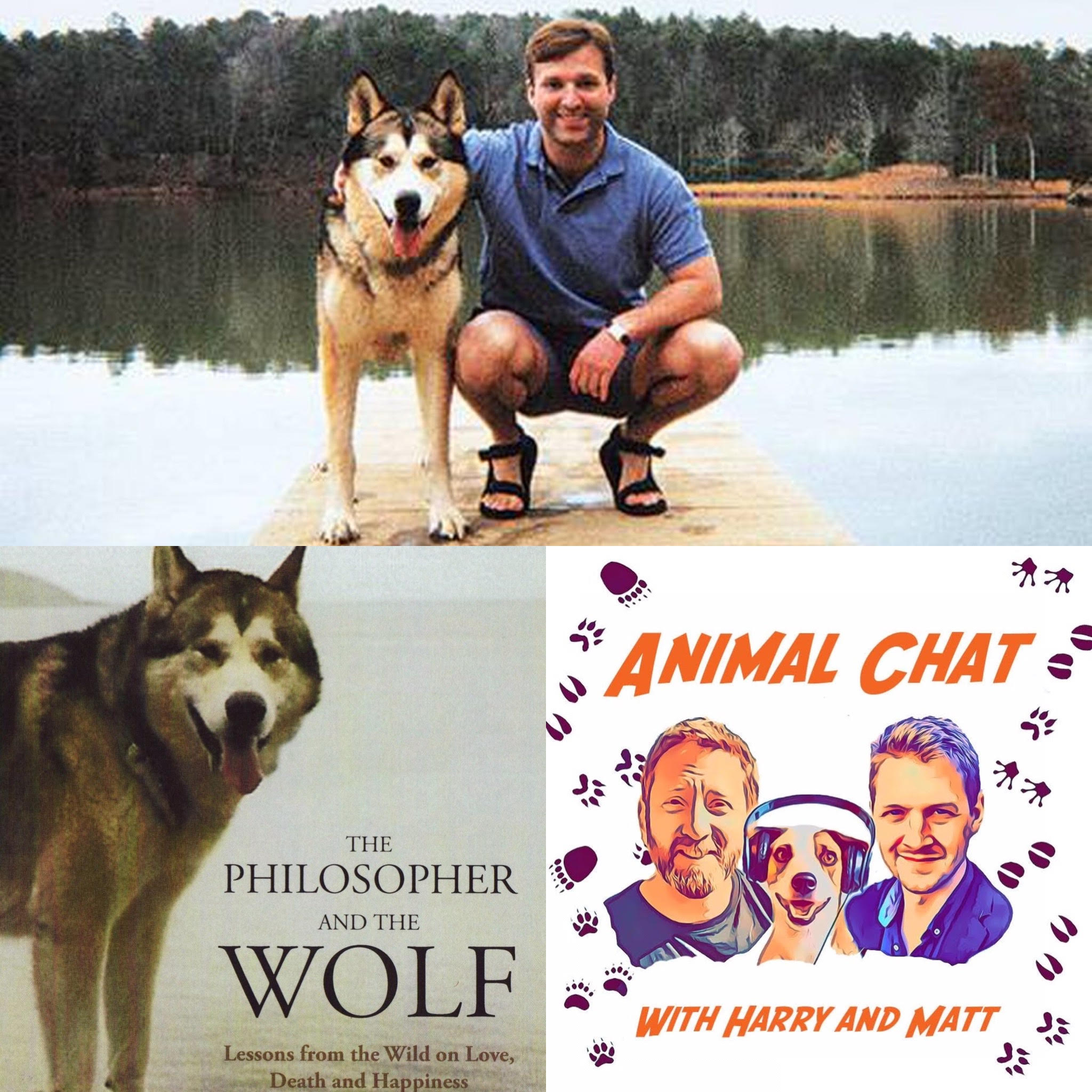 S2 E10 Animal Chat with Mark Rowlands