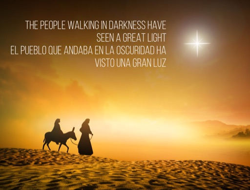 Sunday Sermon: Those walking in darkness have seen a great light