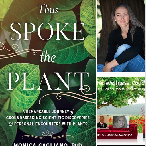 The Wellness Couch & Monica Gagliano- Thus Spoke The Plant.  Episode 33.
