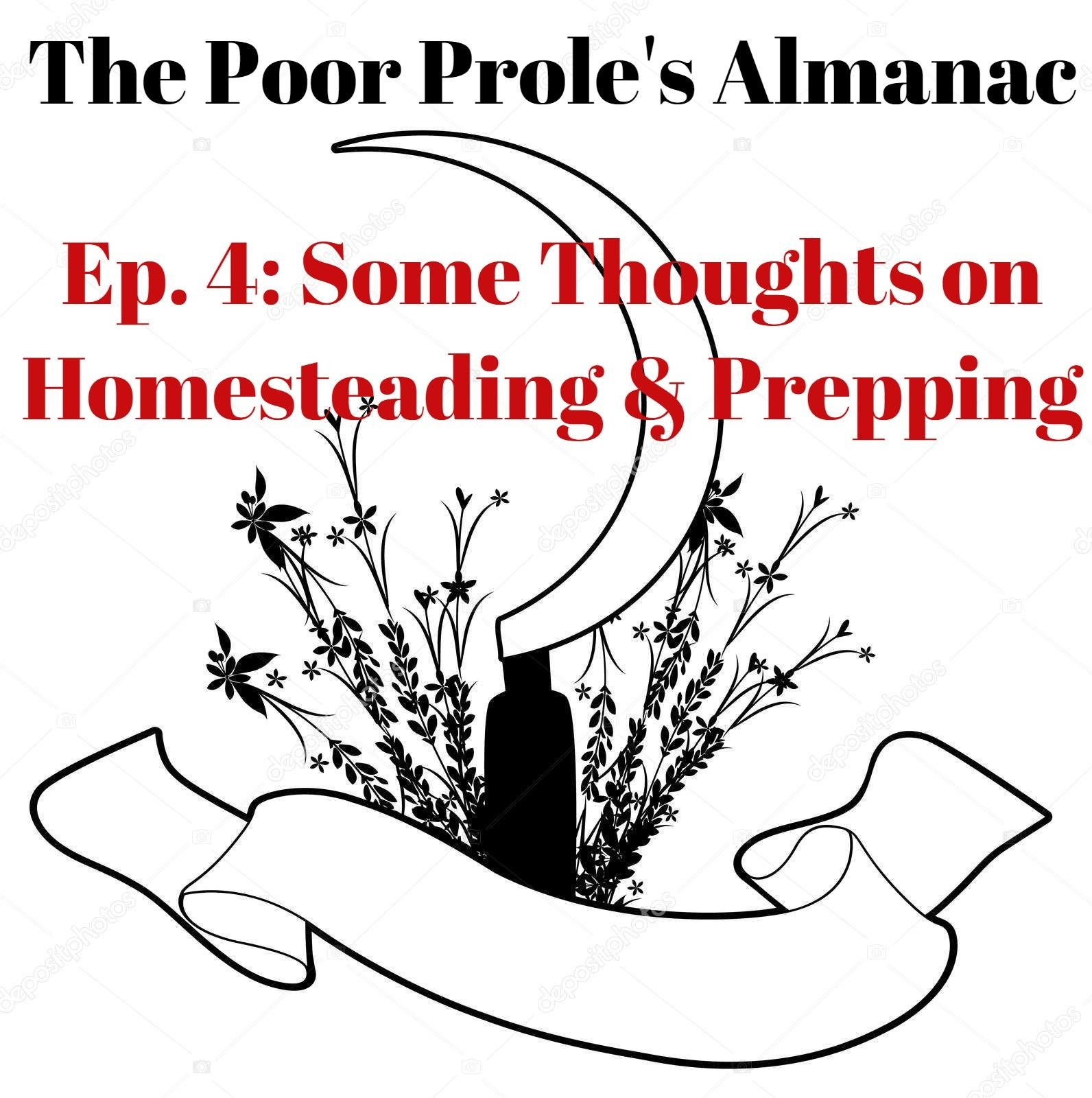 Some Thoughts on Homesteading and Prepping