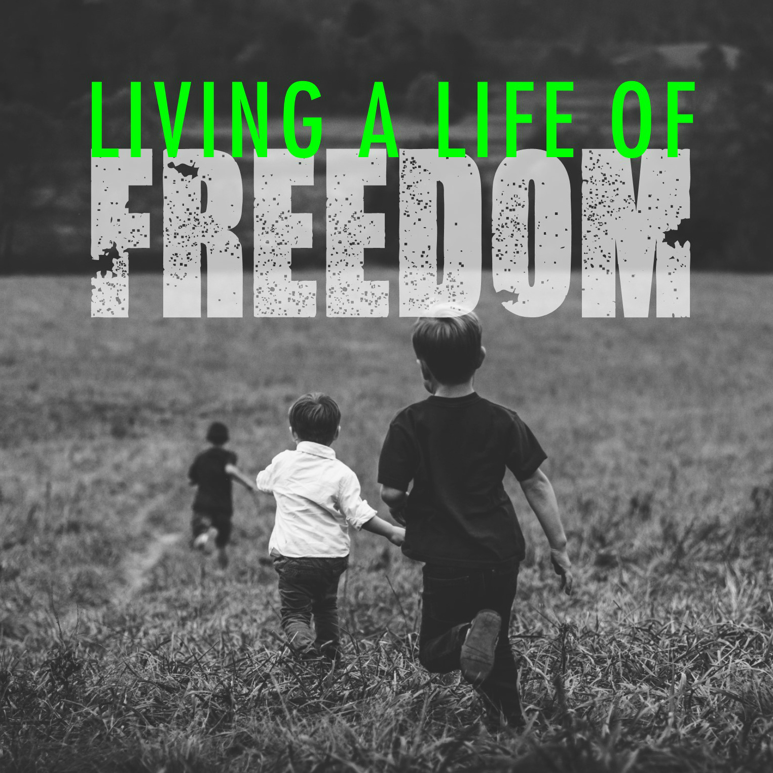 Living A Life of Freedom: Pursuing Him by Glenn Berry