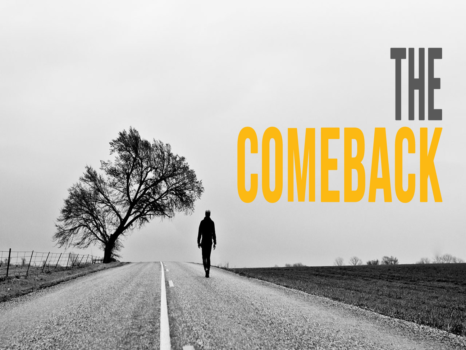 The Comeback: Conclusion