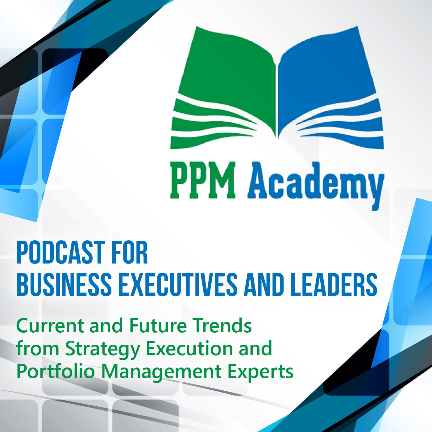 Expert Interview on Leadership in PMOs with Dr. Bojeun