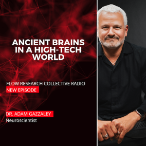 Ancient Brains in a High-Tech World — Dr.Adam Gazzaley | Flow Research Collective Radio