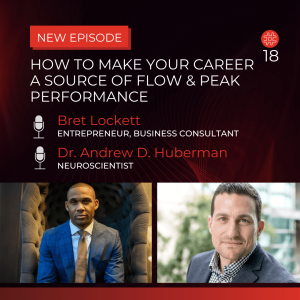 How to Make Your Career A Source Of Flow — Bret Lockett, Dr. Andrew Huberman | Flow Research Collective Radio