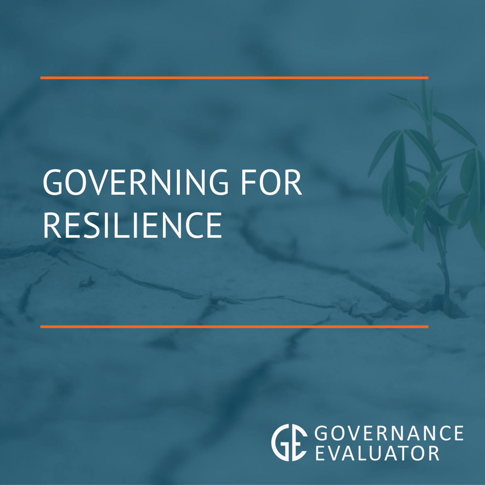 Governing for Resilience